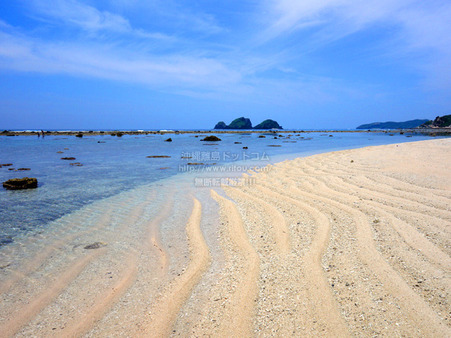 beach20190616DSC02047.jpg