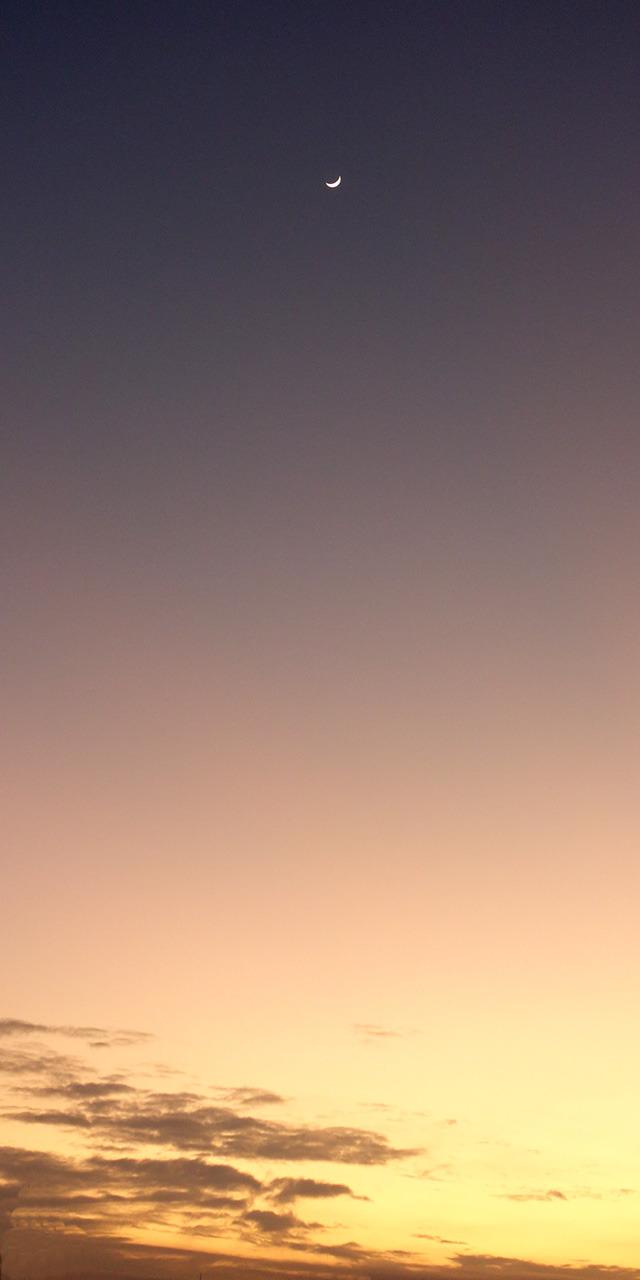 moon20190110ab.jpg