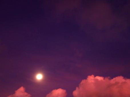 moon202108247474.jpg