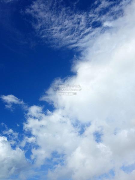 sky202110218128.jpg