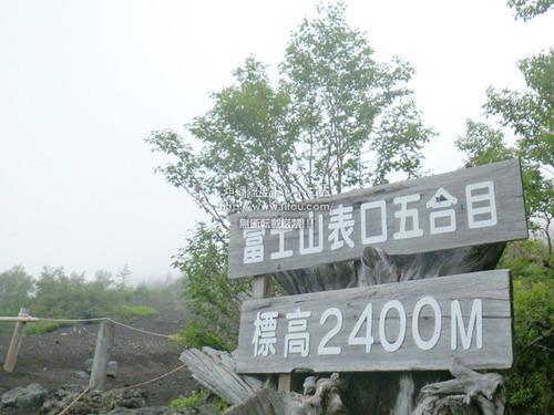 IMGP7116.jpg