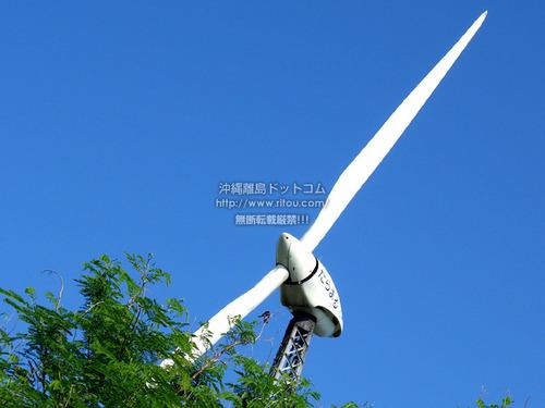taramawindmill2018.jpg