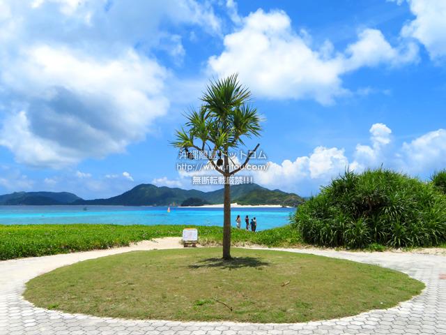 バーチャル沖縄旅行「座間味島編」〜離島ドットコム